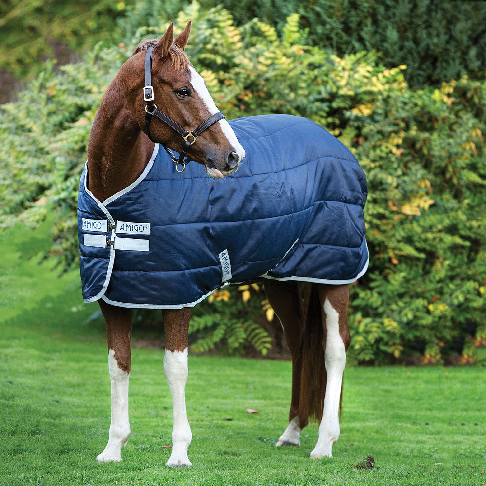 Amigo Insulator Mediumweight 200g Standard Neck Stable Rug Front and Side View ABRA22