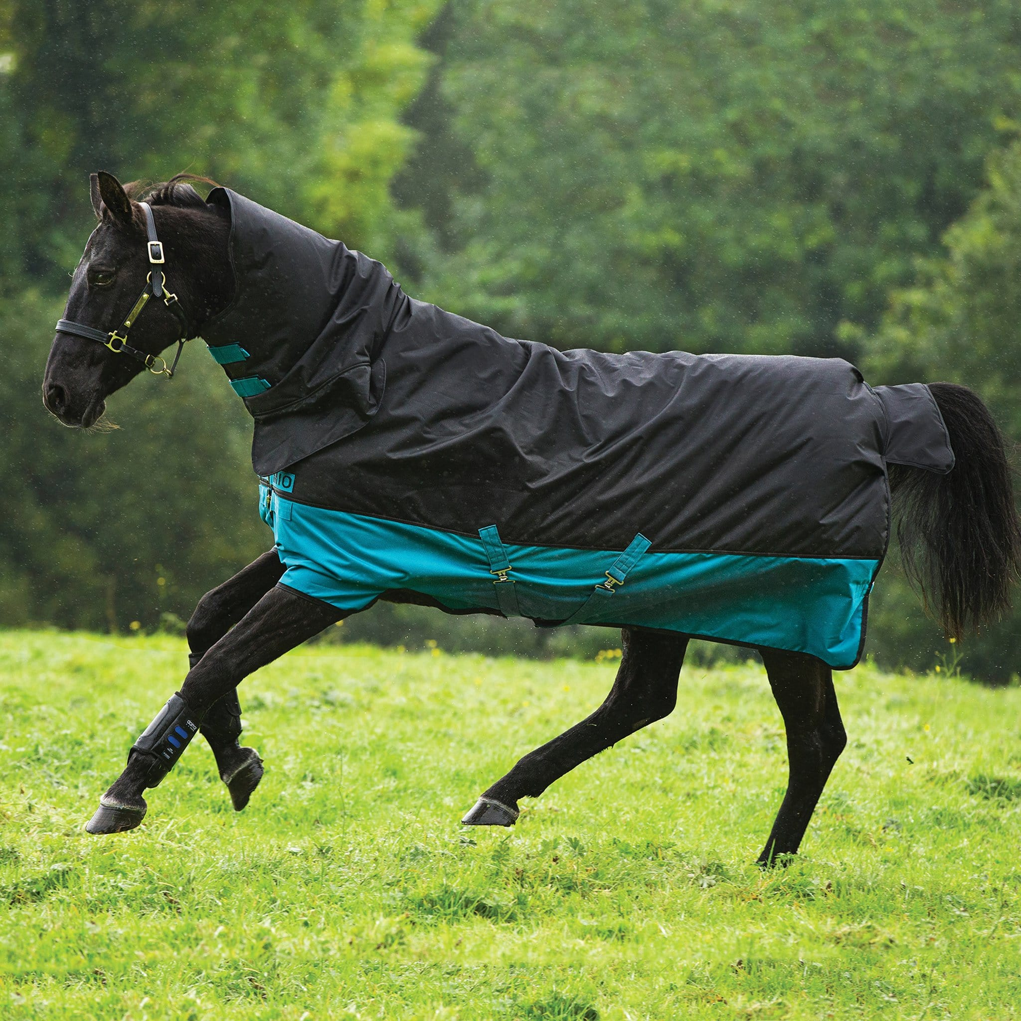 Mio All-In-One Medium 200g Turnout Rug AASJ42