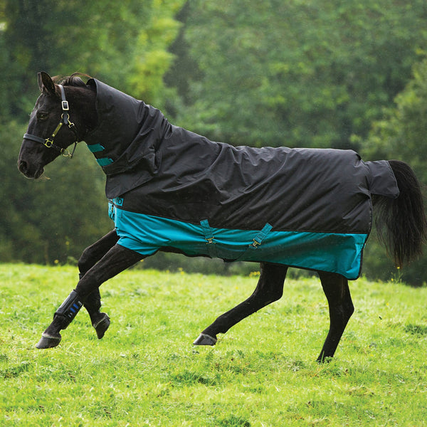 Horseware Mio All-In-One Medium 200g Turnout Rug AASJ42