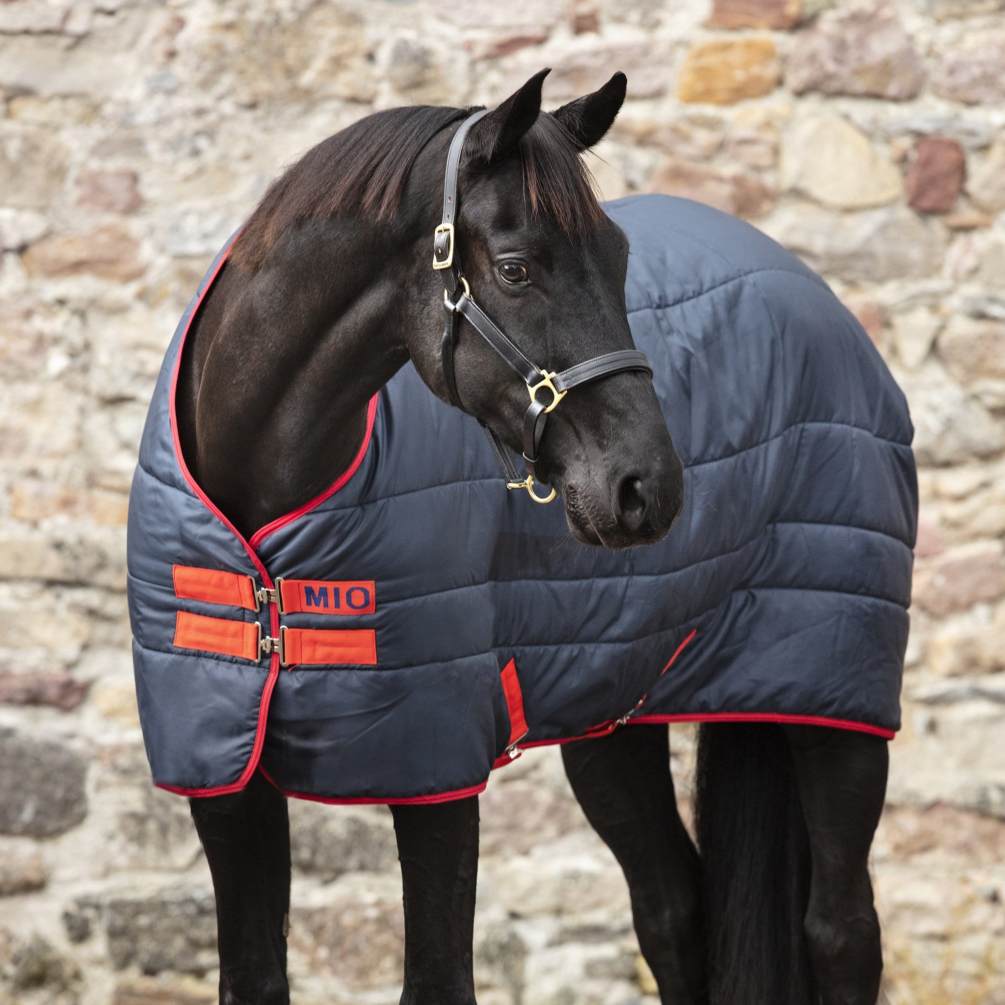 Mio Insulator Mediumweight 150g Standard Neck Stable Rug Navy and Red ABSB32