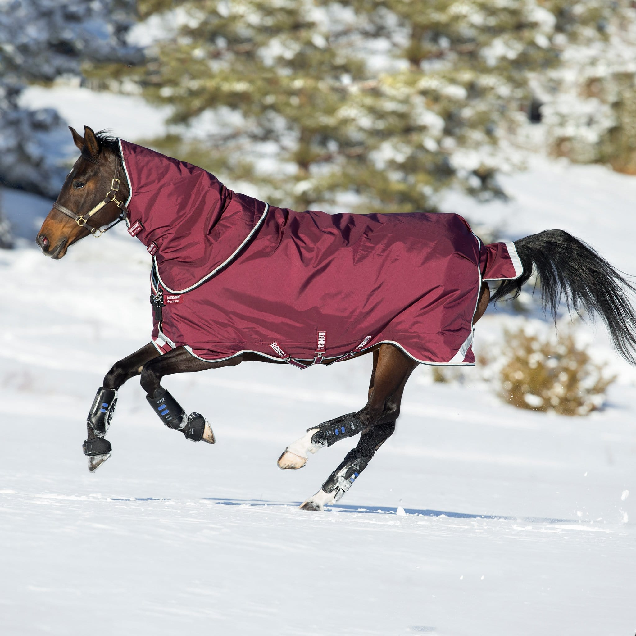 Horseware Rambo Duo Heavy 400g Turnout Rug Burgundy Galloping Horse in the Snow AAAD93
