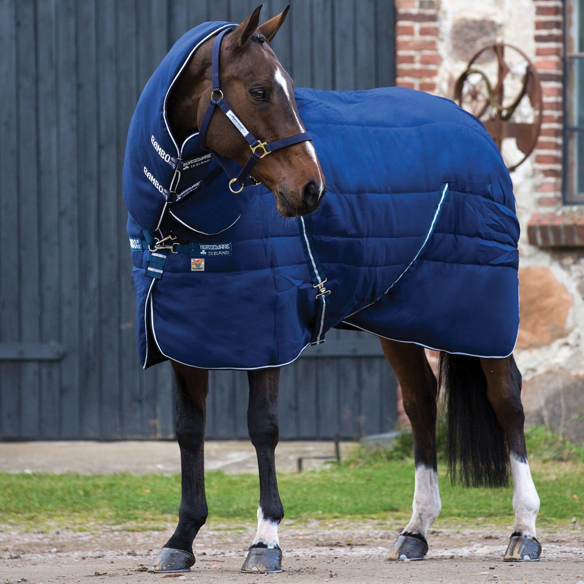 Rambo Plus Heavyweight 450g Detachable Neck Stable Rug with Vari-Layer ABAR34 On Horse