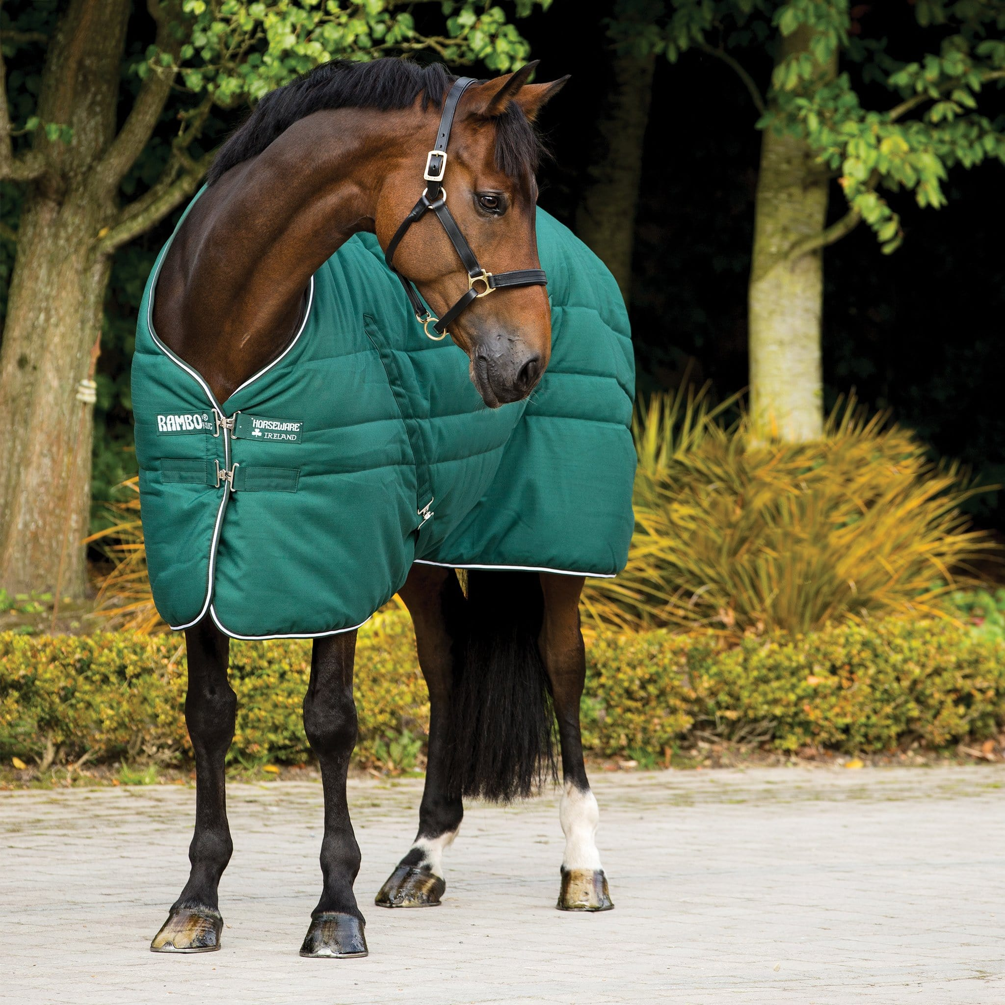 Rambo Mediumweight 200g Standard Neck Stable Rug Hunter Green ABAA22