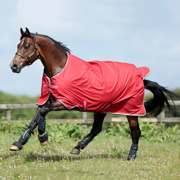 Horseware Amigo Hero ACY Lite 0g Turnout Rug Red AAKA80