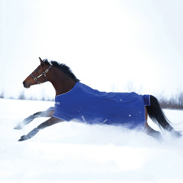 Horseware Amigo Hero ACY Lite 0g Turnout Rug Atlantic Blue in the Snow AAKA80