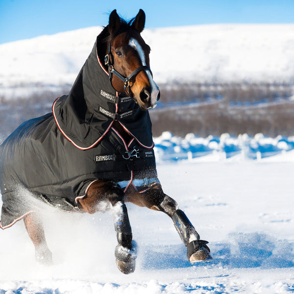 Horseware Rambo Supreme Heavy 420g Turnout Rug Black and Orange Front View in the Snow AAAS93