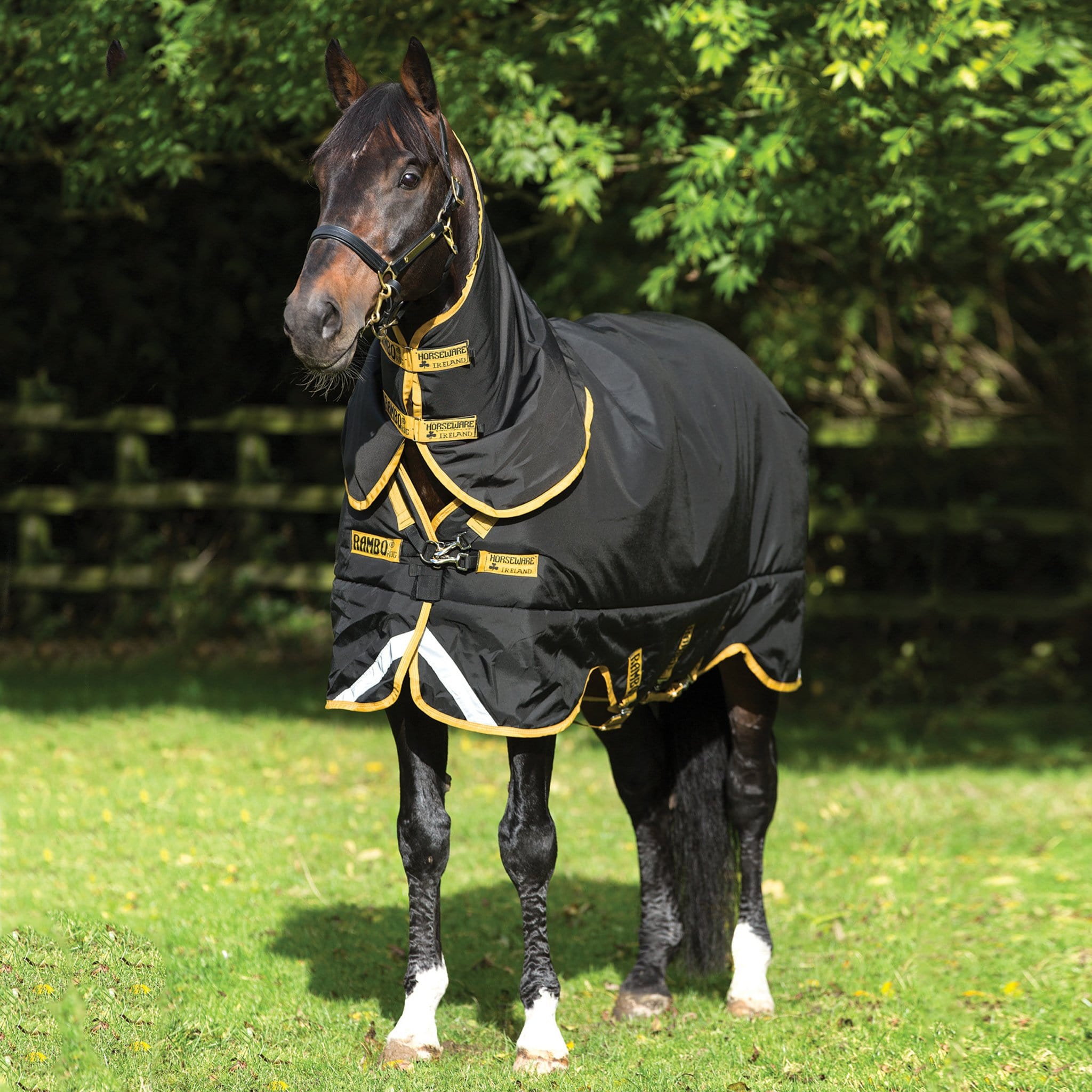 Horseware Rambo Supreme Heavy 420g Turnout Rug Black and Gold Front View AAAS93