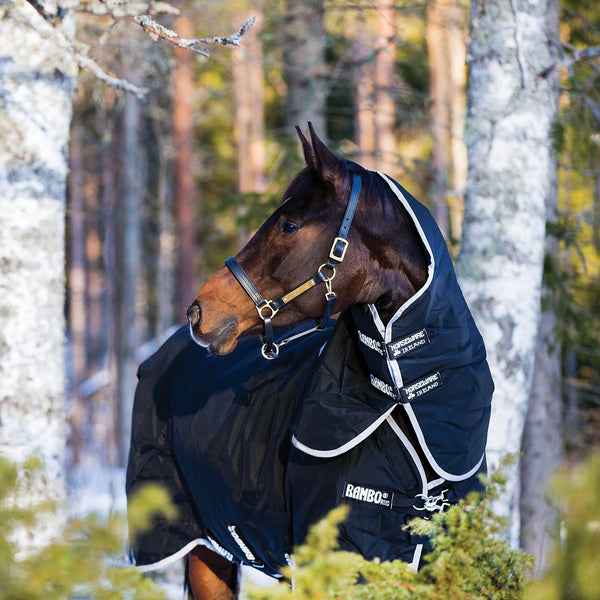 Horseware Rambo Supreme 250g Turnout Rug with Vari-Layer Front View in the Woods AAAX32