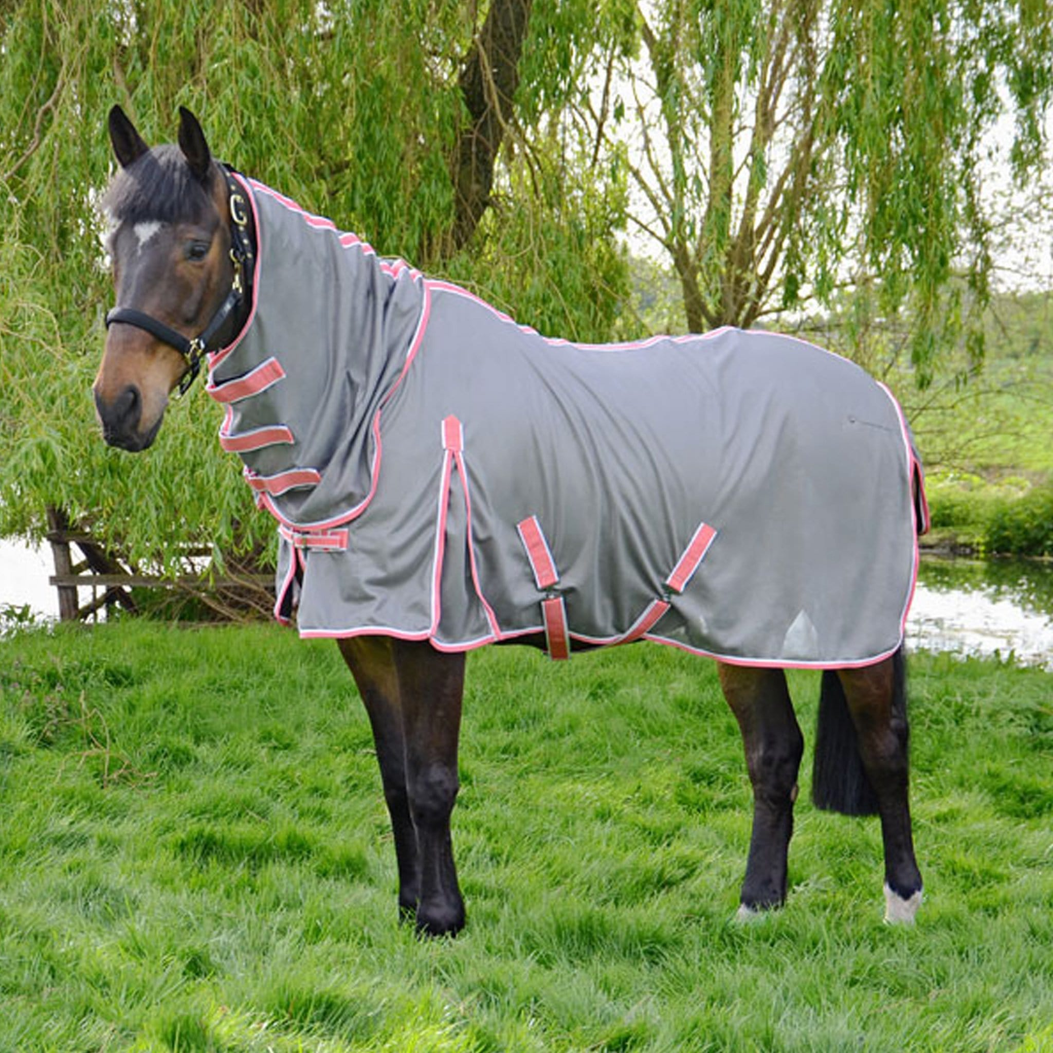Hy Protect Combo Fly Rug 24417 Grey and Coral