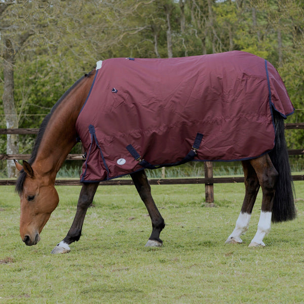 JHL Essential Lightweight Turnout Rug Burgundy Grazing Horse JHL880700
