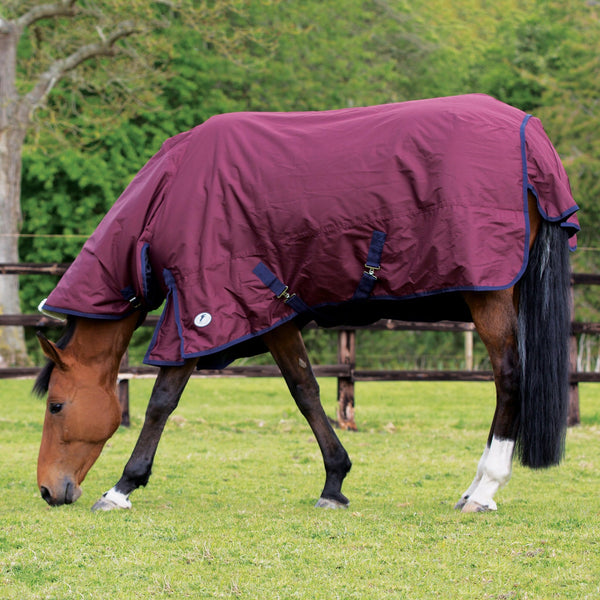 JHL Essential Mediumweight Combo Turnout Rug JHL880725