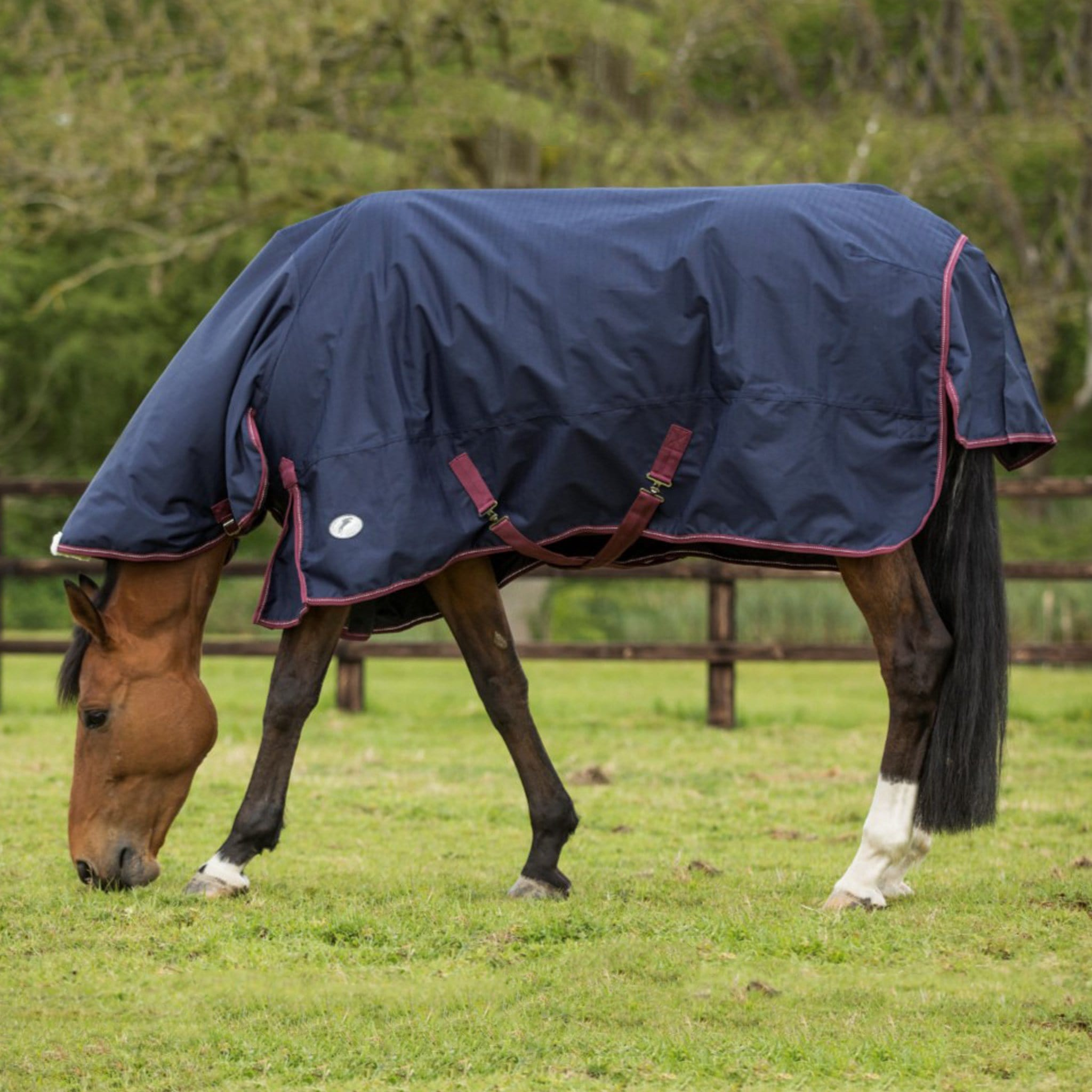 JHL Heavyweight 350g Combo Neck Turnout Rug JHL887242