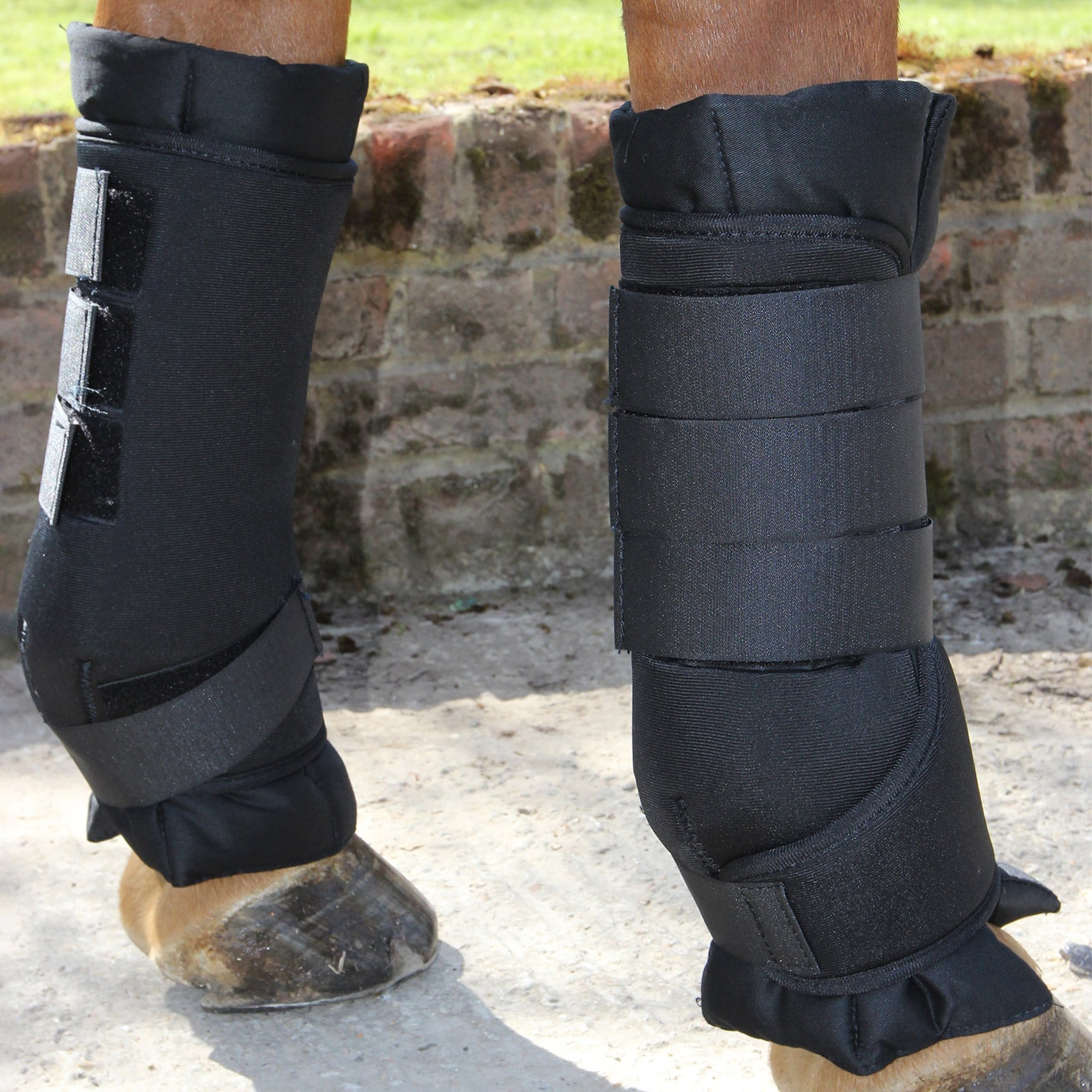 JHL Stable Boots On Horse 884966