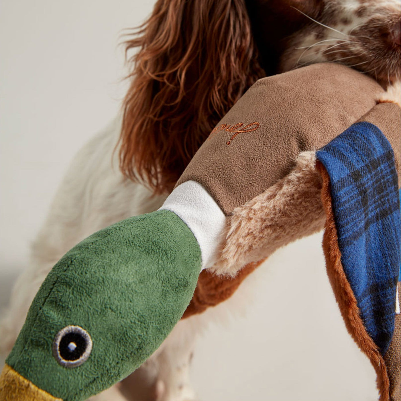 Joules Plush Printed Duck Dog Toy – EQUUS