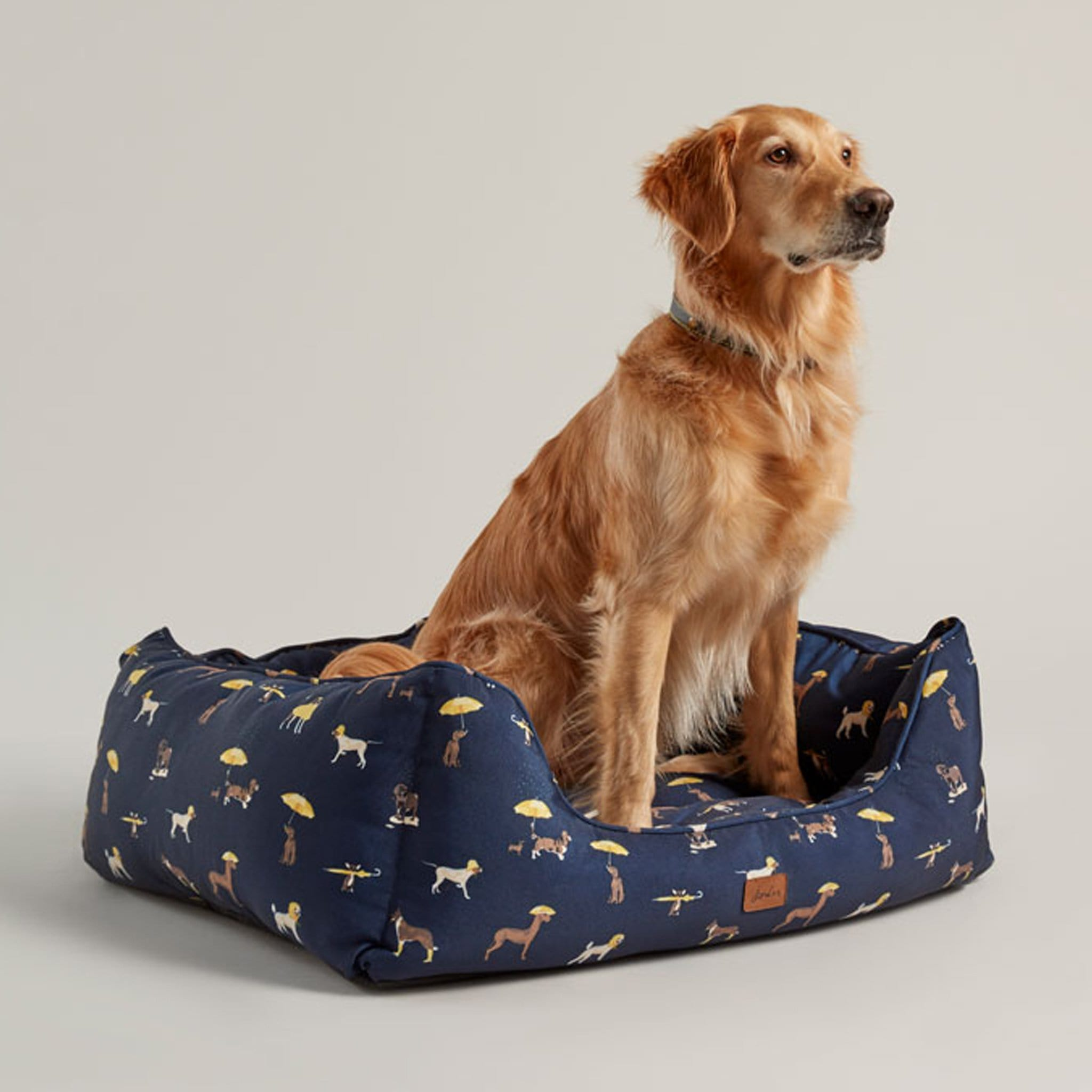 Joules Print Box Dog Bed 27112 Dog Print From Front