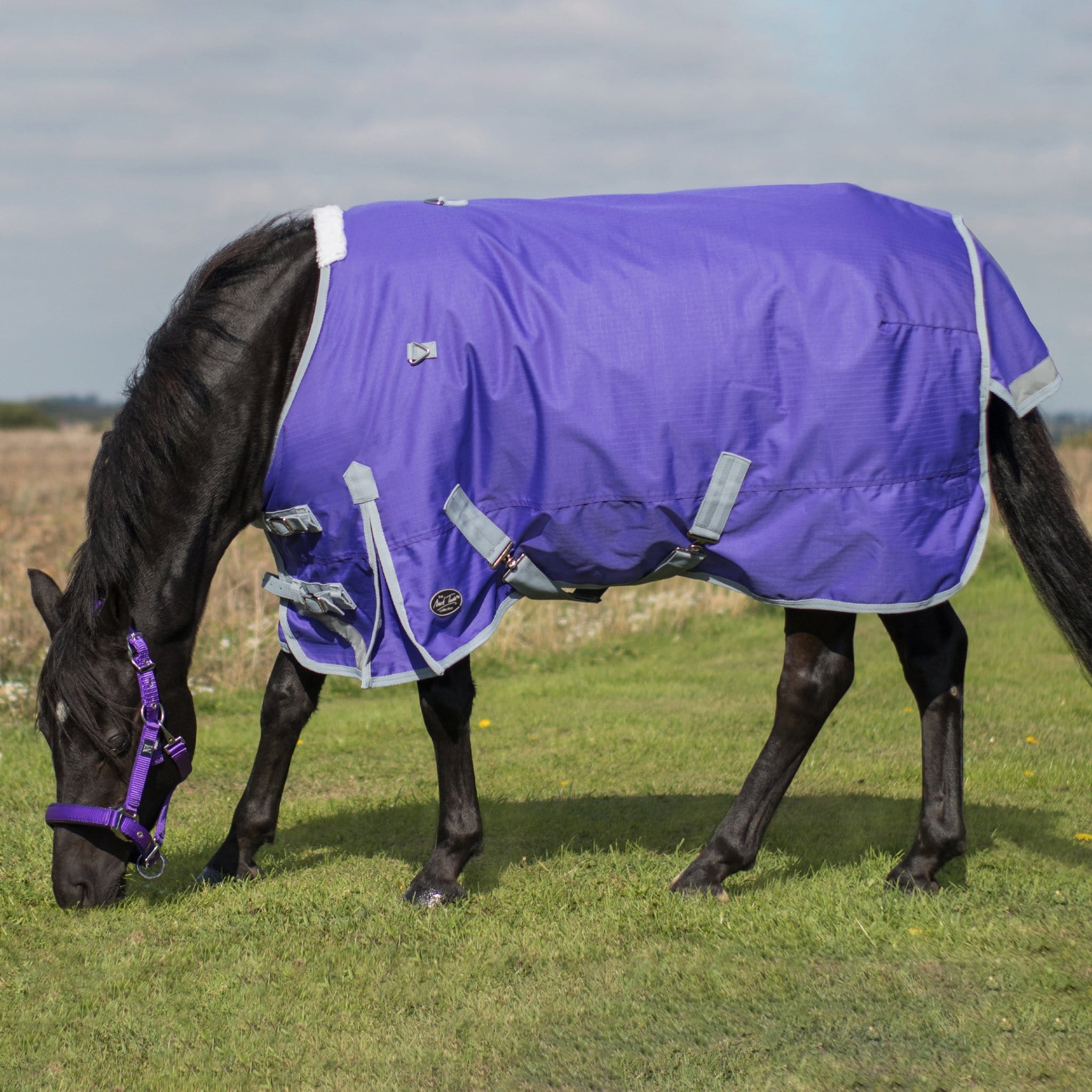 Mark Todd Mediumweight 220g Standard Pony Turnout Rug TOD893462.
