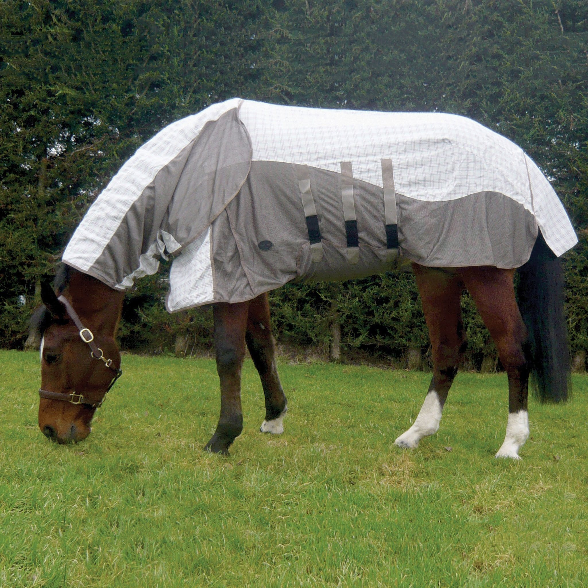 Mark Todd Air Mesh Combo Fly Rug TOD880644 White and Taupe On Horse Grazing