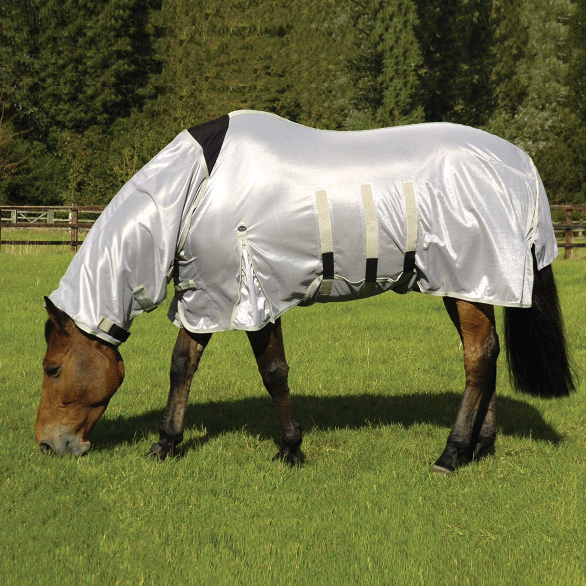 Mark Todd Fly Ultra Combo Rug TOD885440