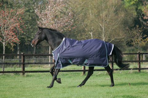Mark Todd Heavyweight Turnout Rug Navy & Aqua 880967