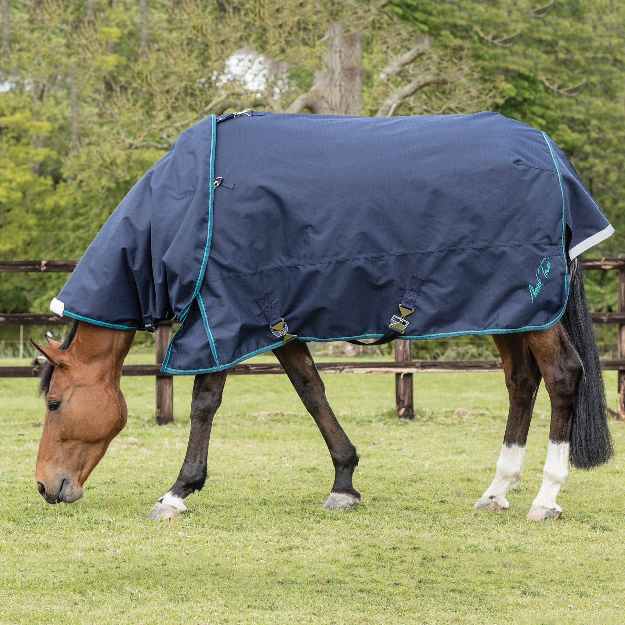 Mark Todd Heavyweight 350g Detachable Neck Turnout Rug TOD880676