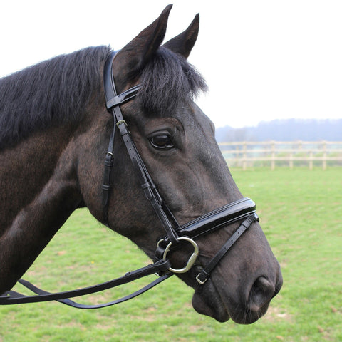 Mark Todd Patent Dressage Bridle 884328