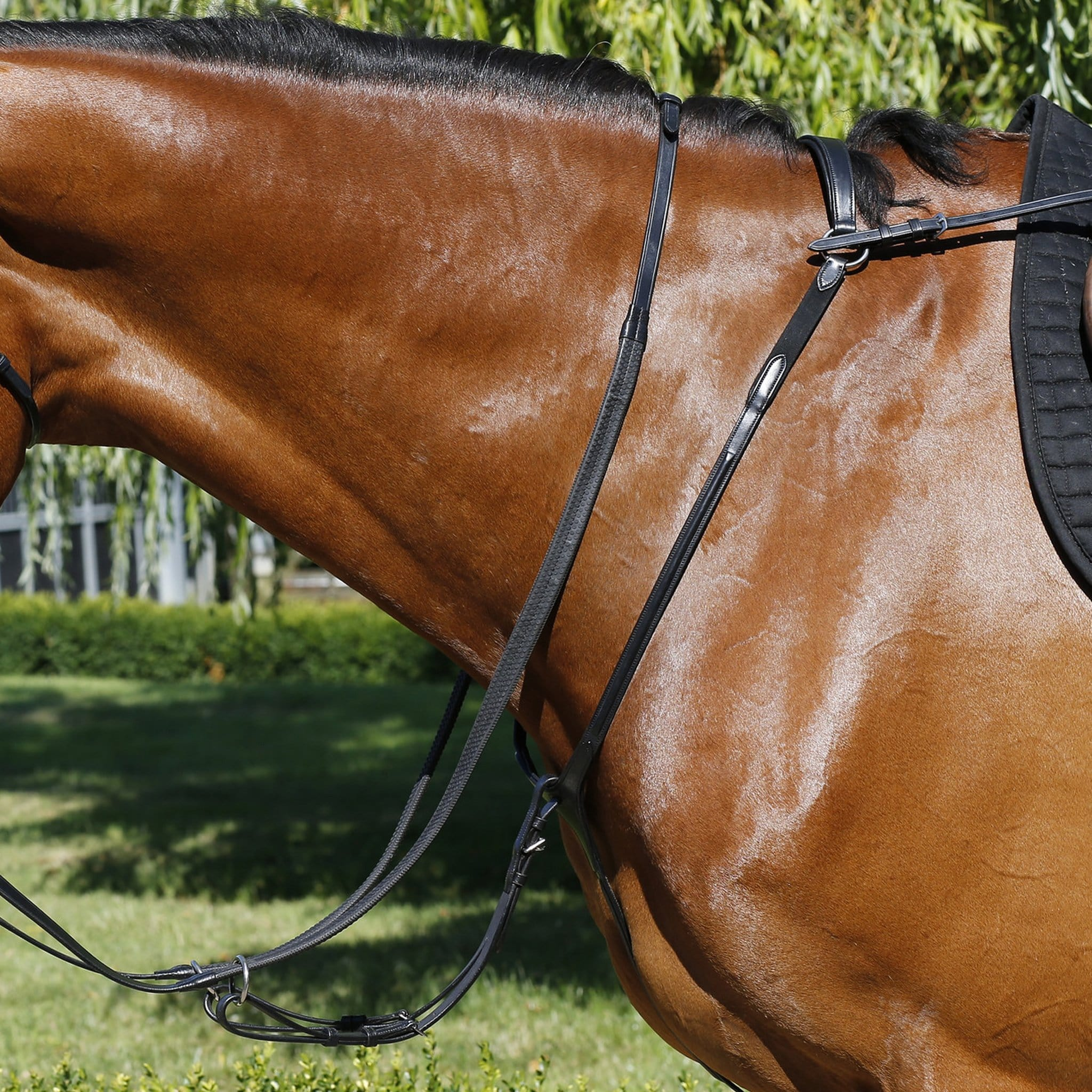Mark Todd Performance Breastplate Black TOD893254