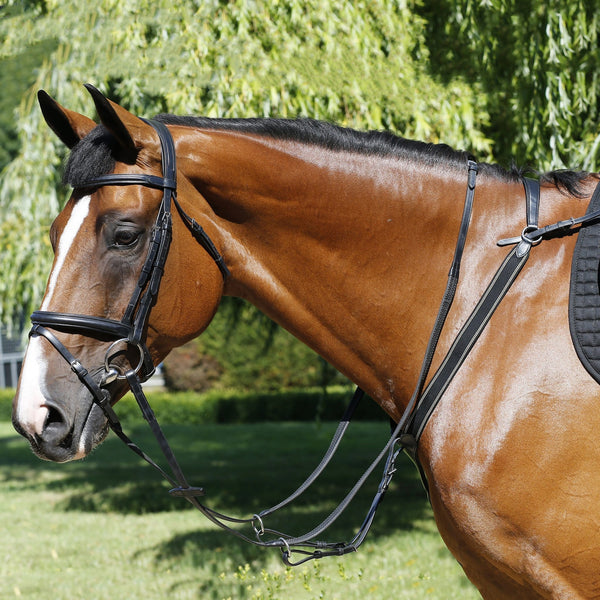 Mark Todd Performance Elastic Breastplate Black TOD893250