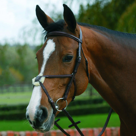Mark Todd Plain Raised Bridle With Grackle Noseband Havana TOD884146