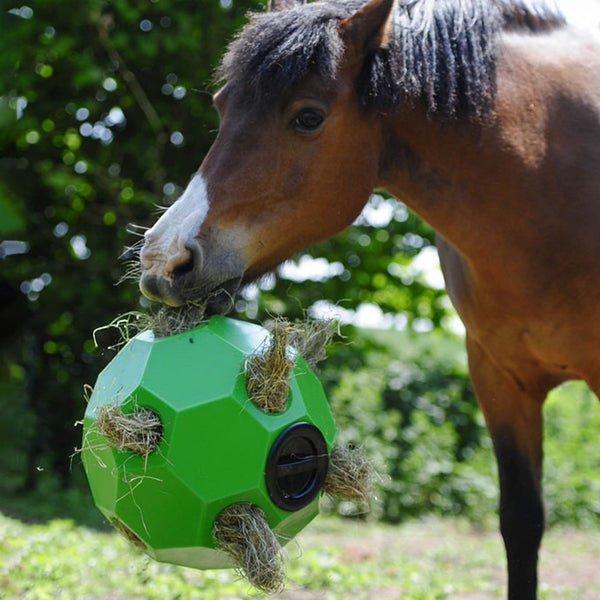 Parallax Hay Play in Green with Horse 20360