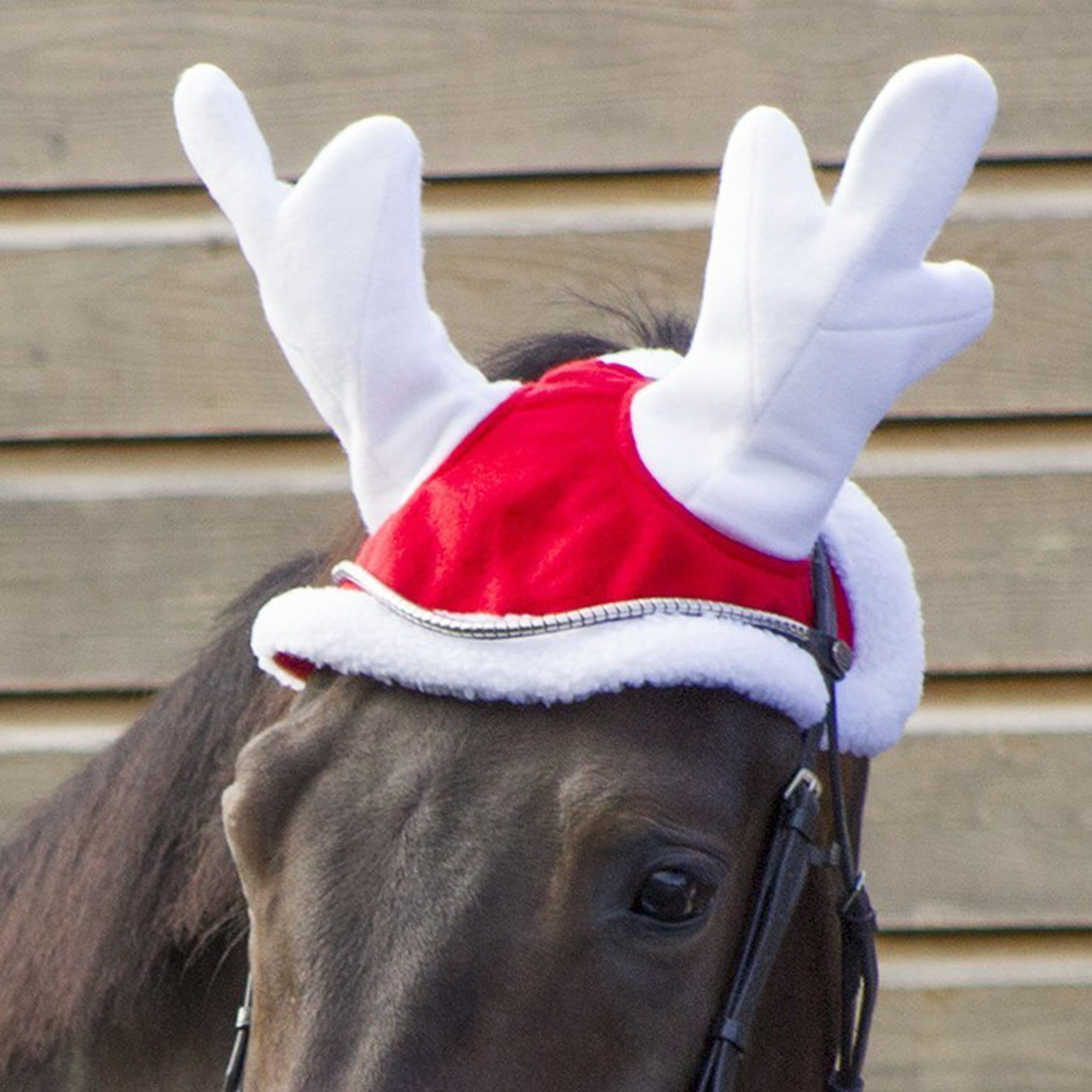 QHP Christmas Reindeer Hat Red 5091 On Horse Close Up