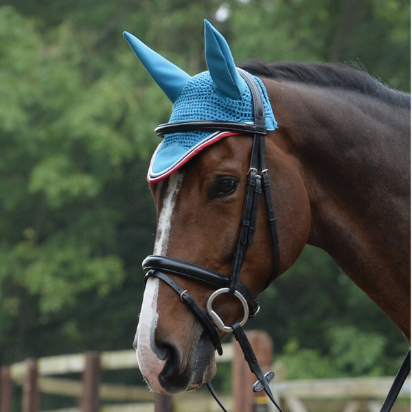 Saxon Coordinate Ear Cover Blue on Horse 811810