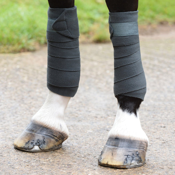 Saxon Coordinate Fleece Bandages Grey on Horse 811795