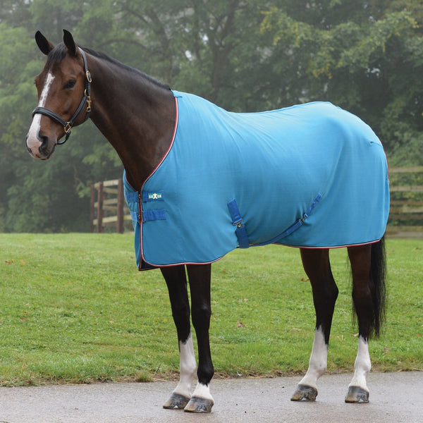 Saxon Coordinate Polar Fleece Rug Blue 811852