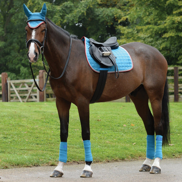 Saxon Coordinate Quilted All Purpose Saddle Pad Blue Matching Set on Horse 811798