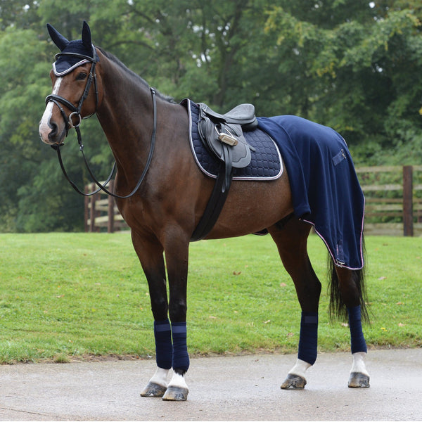 Saxon Coordinate Quilted All Purpose Saddle Pad Navy Matching Set on Horse with Rug 811804