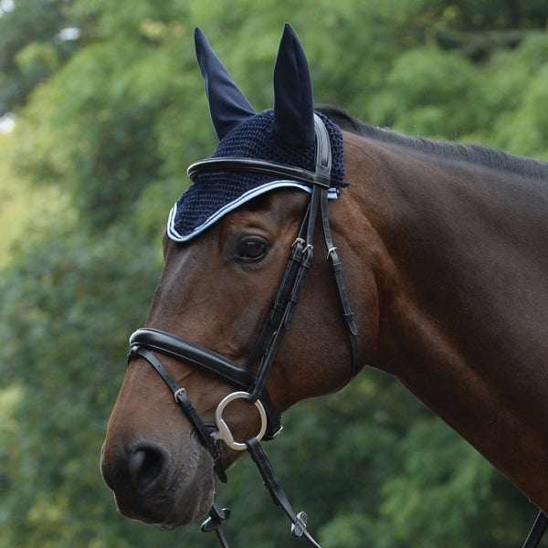 Saxon Element Ear Cover Navy and Blue on Horse 811831