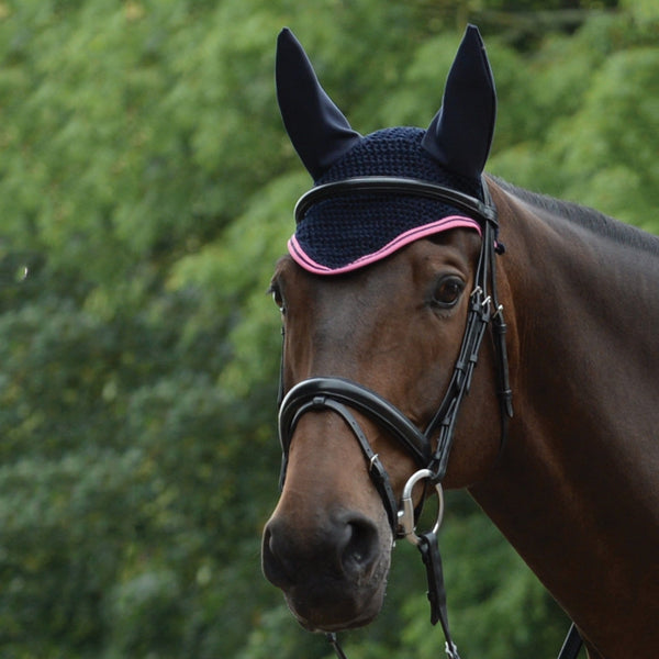 Saxon Element Ear Cover Navy and Pink on Horse 811834