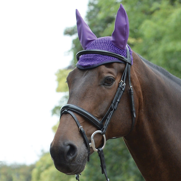 Saxon Element Ear Cover Purple and Navy on Horse 811837
