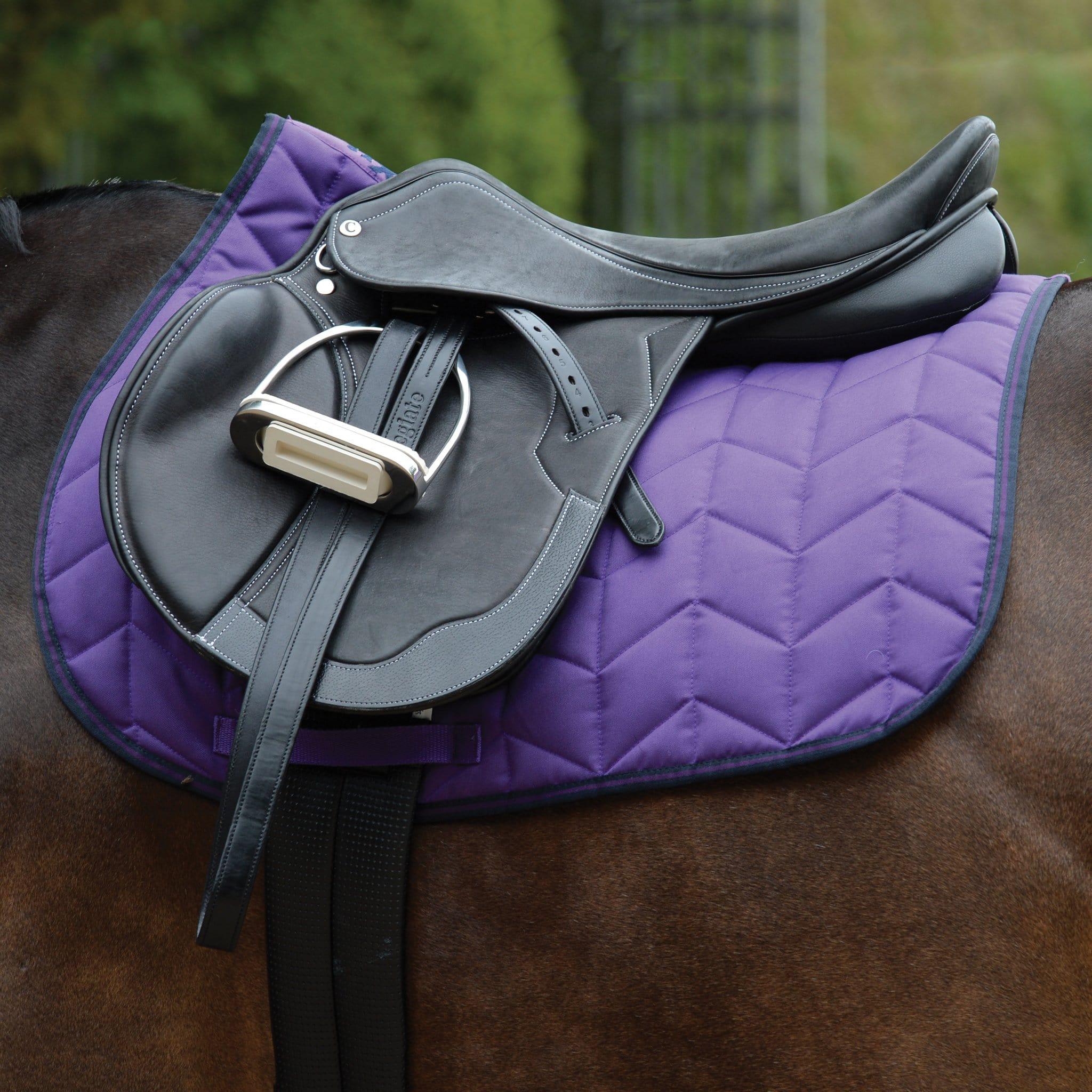 Saxon Element Quilted All Purpose Saddle Pad Purple and Navy Under Saddle 811828