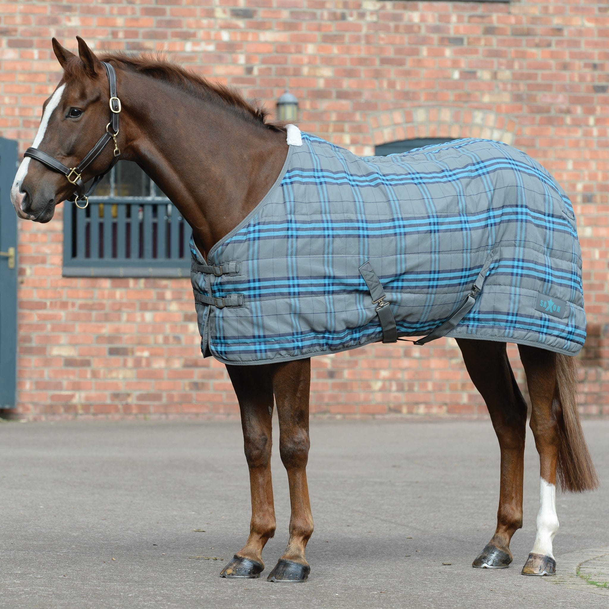 Saxon PP Standard Neck Mediumweight Stable Rug Grey And Blue Plaid 808266.