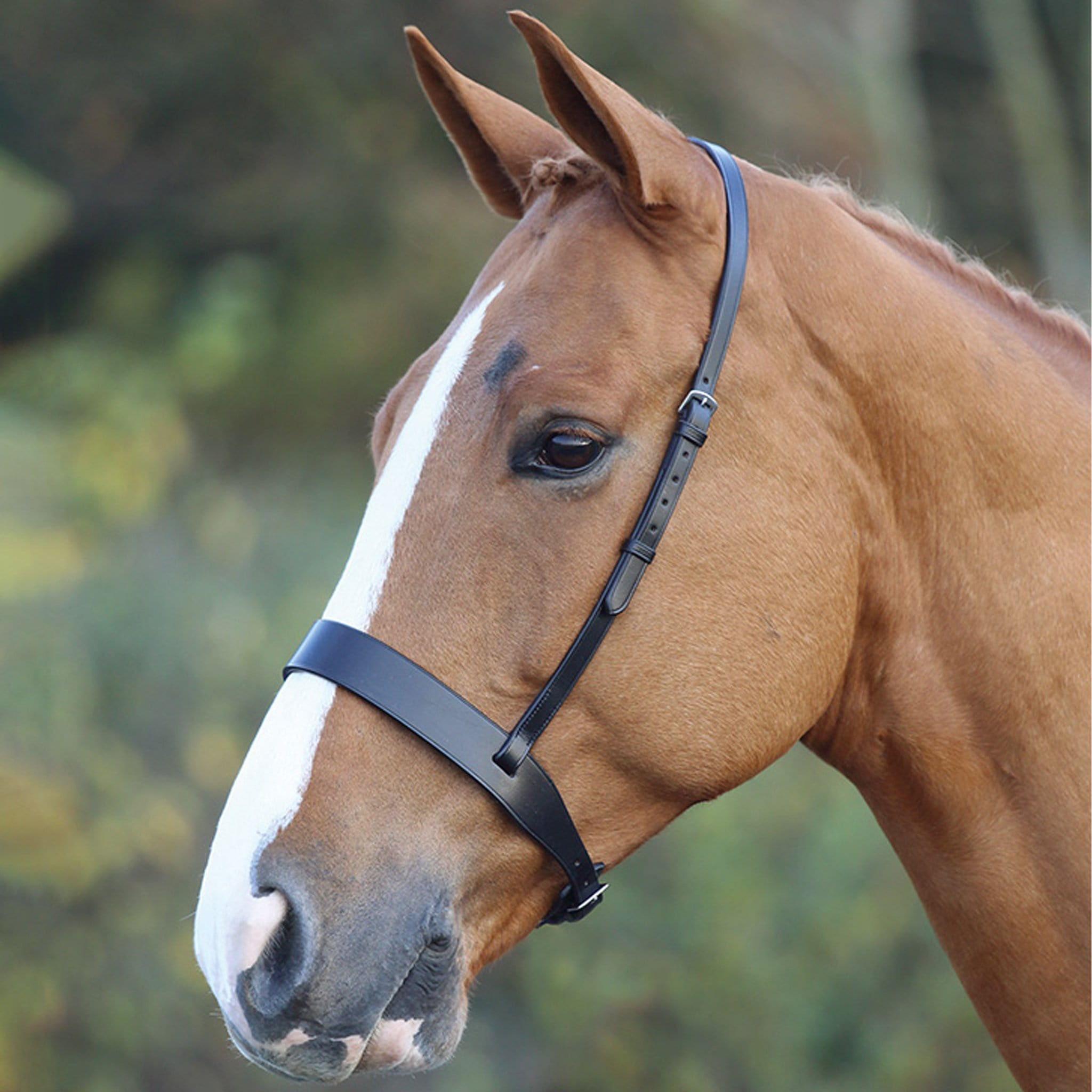 Shires Blenheim Hunter Cavesson Noseband 345H.