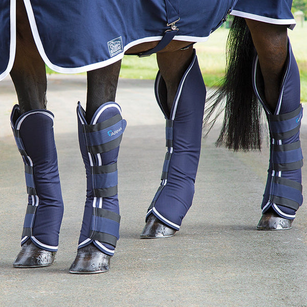 Shires Arma Travel Boots in Navy and White 1834