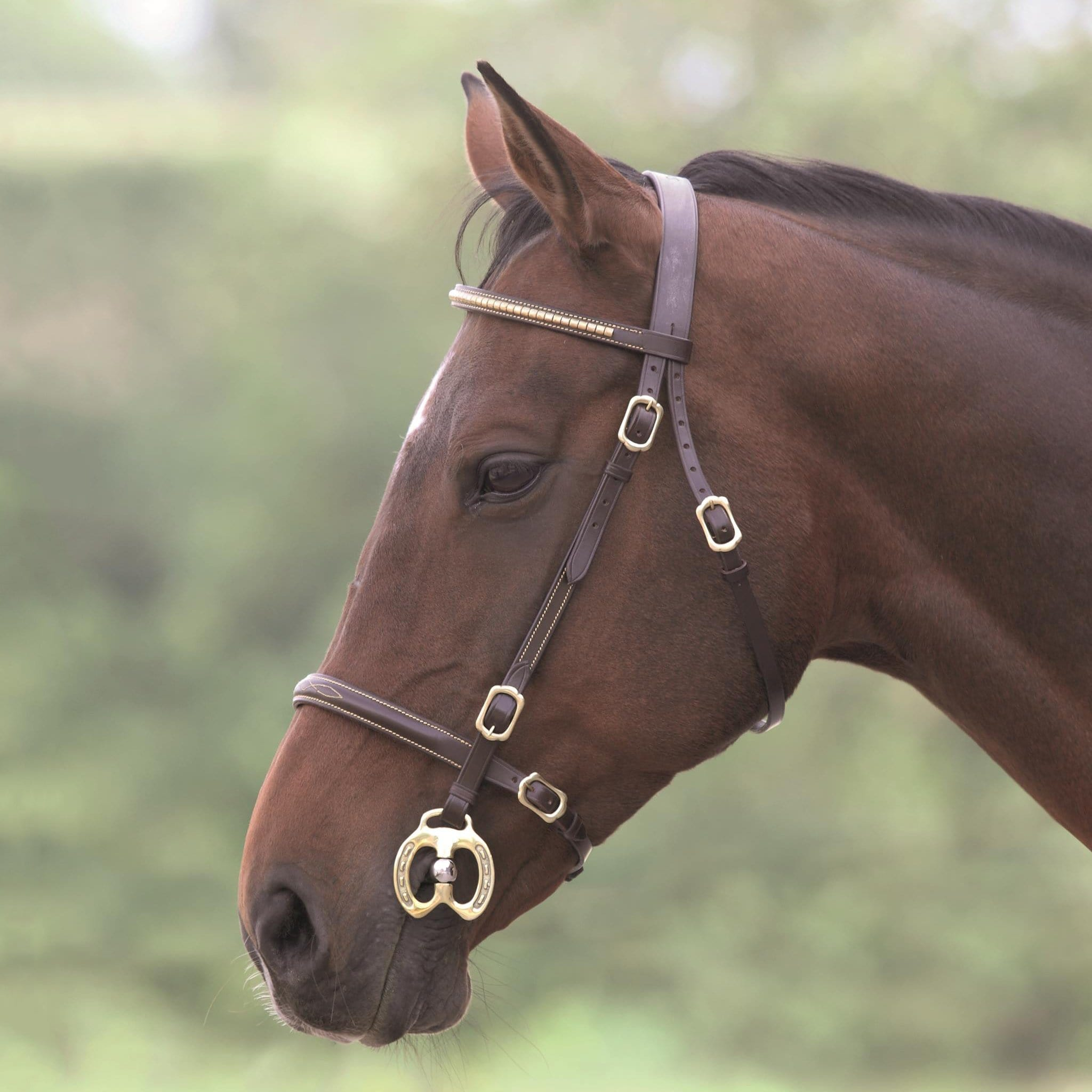 Shires Blenheim Clincher Inhand Bridle 4137