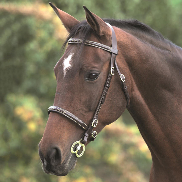 Shires Blenheim Fancy Stitched Inhand Bridle 4136