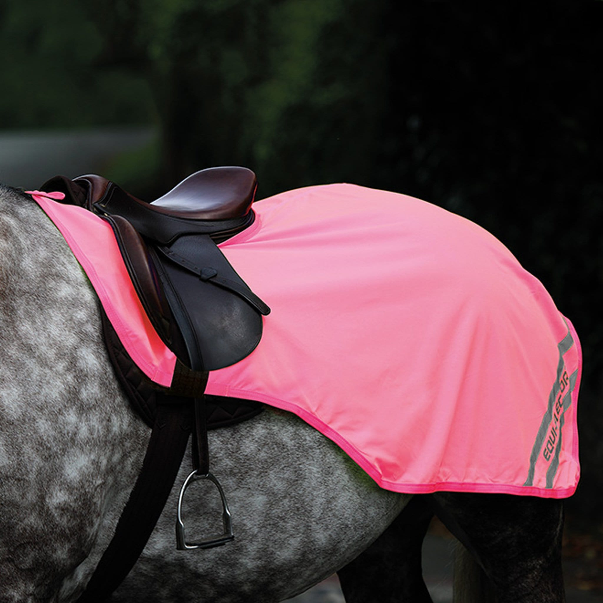 Shires Equi-Flector Exercise Sheet Pink 9329
