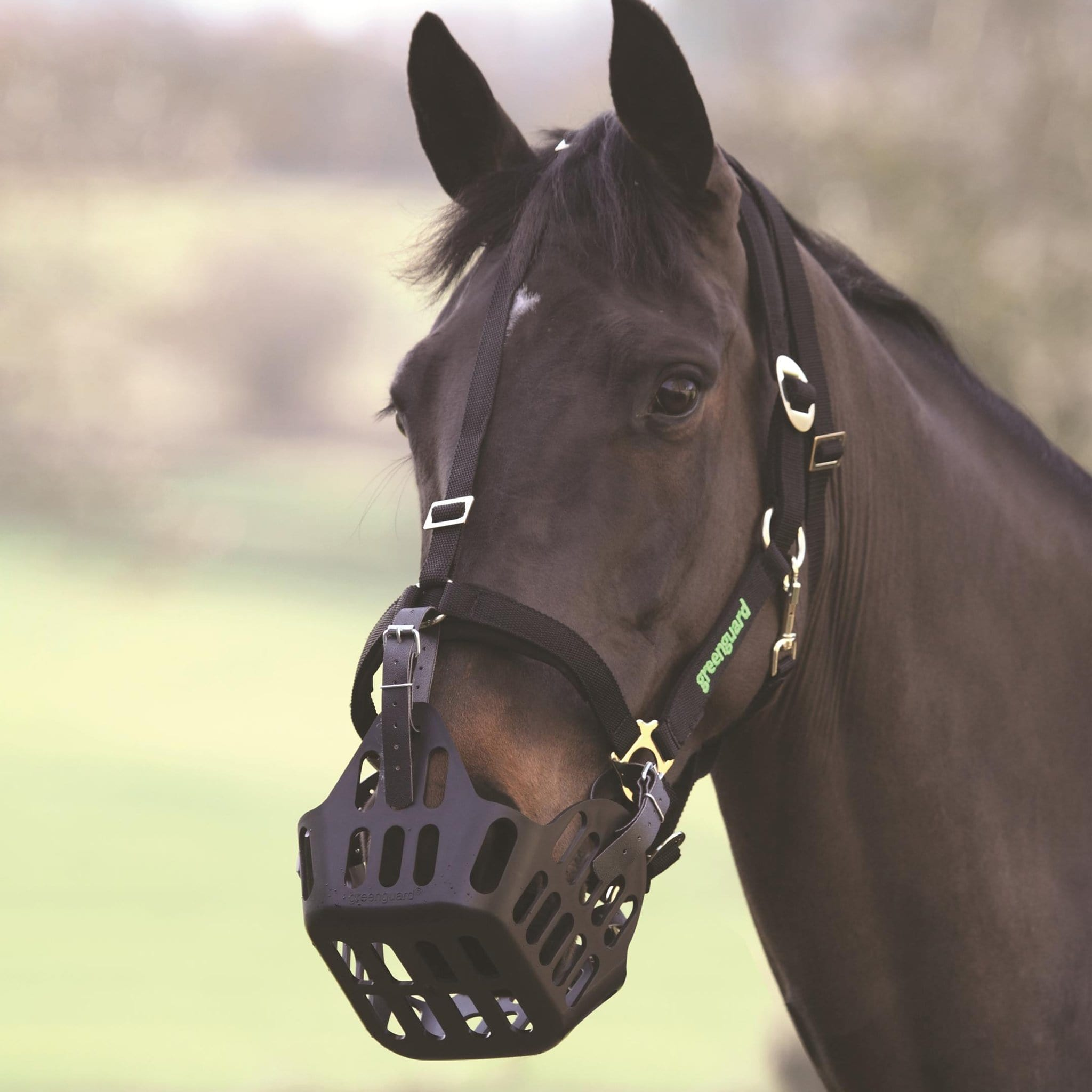 Shires Greenguard Muzzle 5414