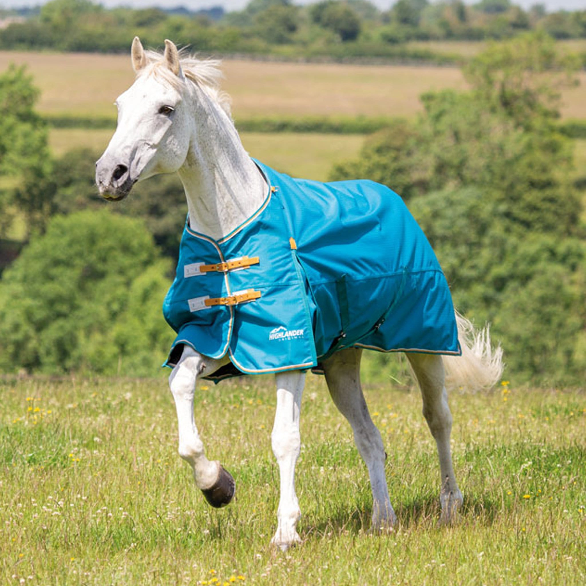 Shires Highlander Original Lightweight 0g Standard Turnout Rug 9350 Teal and Yellow