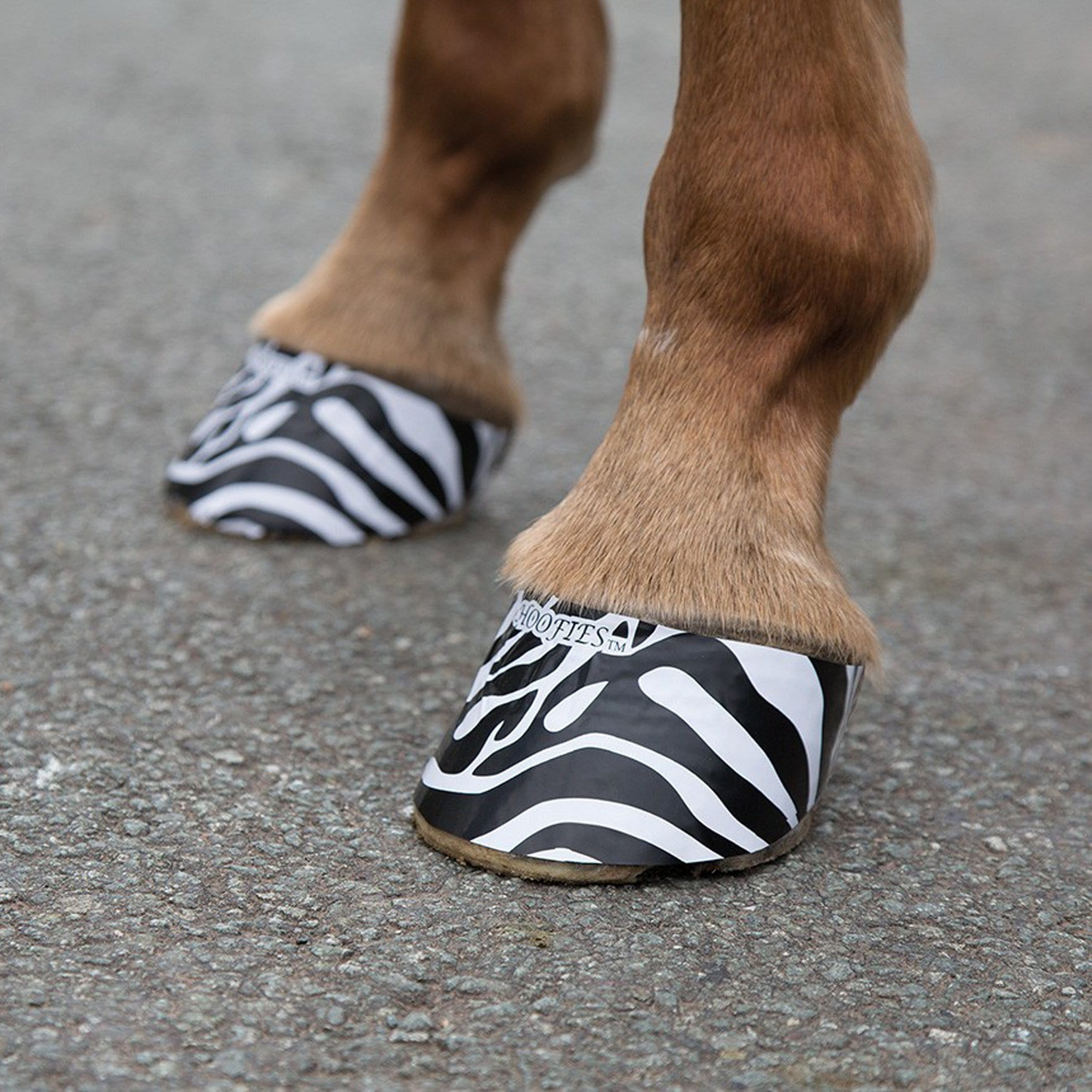 Shires Hoofies Hoof Stickers in White Zebra 1340