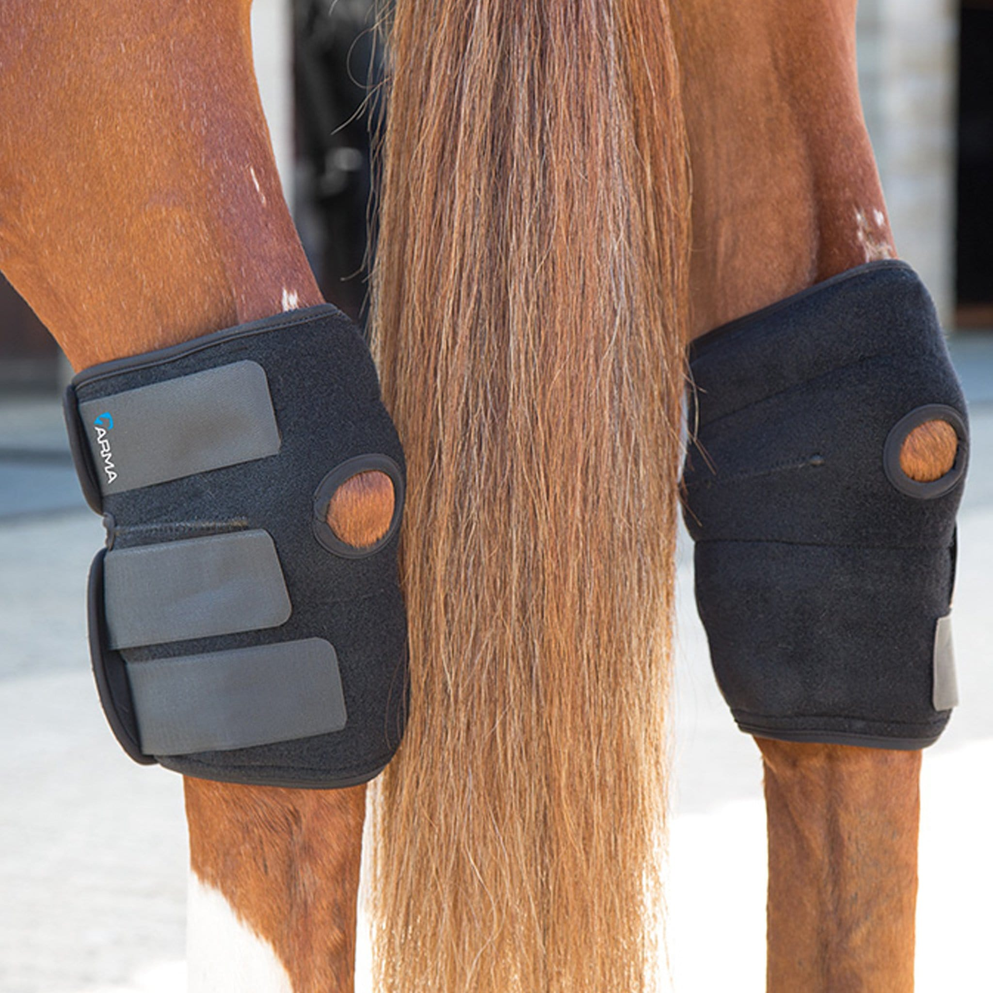 Shires ARMA Hot/Cold Joint Relief Boots Hocks 2005.
