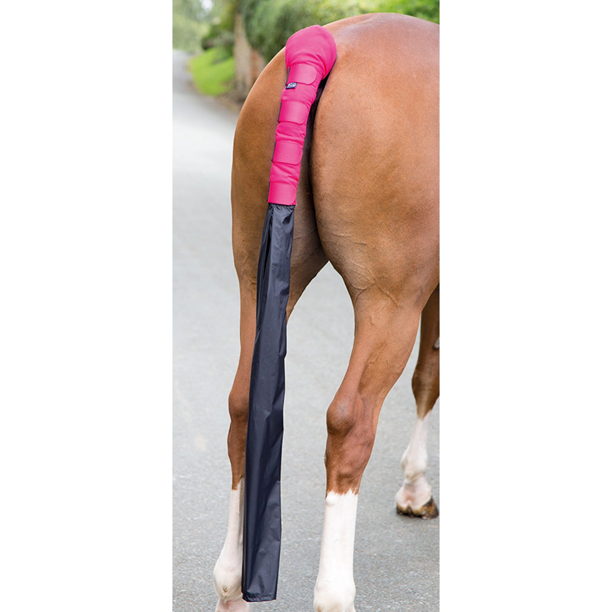 Shires Padded Tail Guard with Bag in Pink